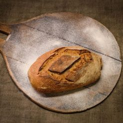 pain bio le khorasan