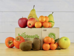 grand paniers fruits bio biotentik