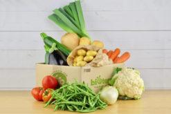 panier légumes bio famille xxl