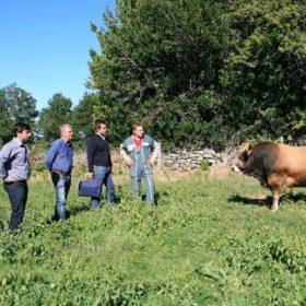agriculteurs bio occitanie