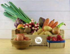 panier fruits et légumes bio local