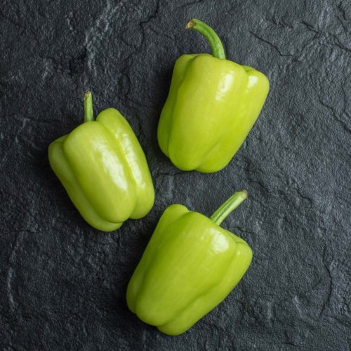 poivron vert bio